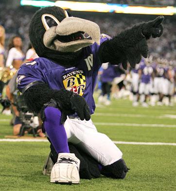 http://thefootbawlblog.files.wordpress.com/2012/03/ravens-mascot-430a081108.jpg